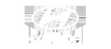 client-hyundai-logo-img